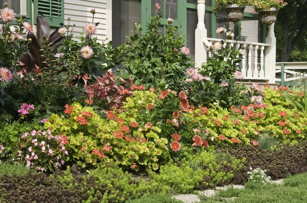 Lush ornamental garden in front of vintage farmhouse, late summer, northern Illinois-1